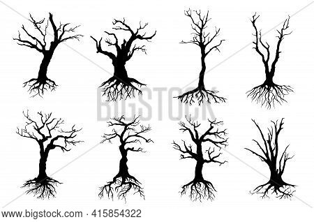 Dead Trees Isolated Vector Black Silhouettes. Dry Wood With No Leaves, Naked Branches And Long Roots