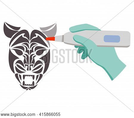 Laser Tattoo Removal Tiger Face.removal Procedure Unwanted Tattoos.
