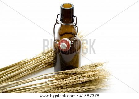 Beer in Brown Glass Bottle with  wheat ear