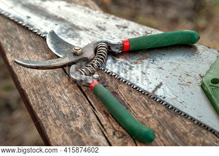 Garden Secateurs And Saw Lying On An Old Wooden Surface. Old Garden Tools. Work In The Garden. Natur