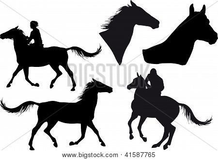 poster of five silhouettes of horses horse heads and riders