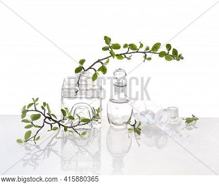 Natural Green Laboratory. Abstract Floral Arrangement With Transparent Glass Vase And Vial With Liqu