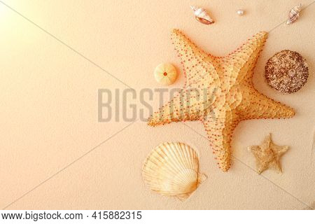 Seafood on a background of sand. Background about sea, ocean or tourism. About sailors, captains, underwater inhabitants. Pirate treasures.