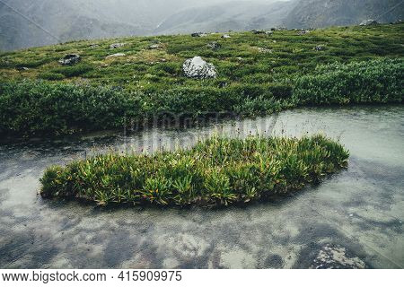 Small Green Islet With Grasses And Flowers Among Calm Water Of Mountain Lake With Clear Water. Atmos