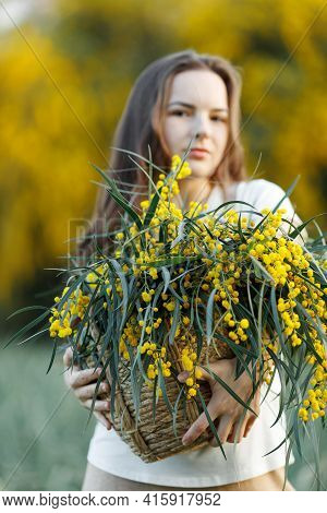 Soft Focus Portrait Girl With Long Hair With A Yellow Acacia Mimosa Flower Basket. Walk In The Flowe