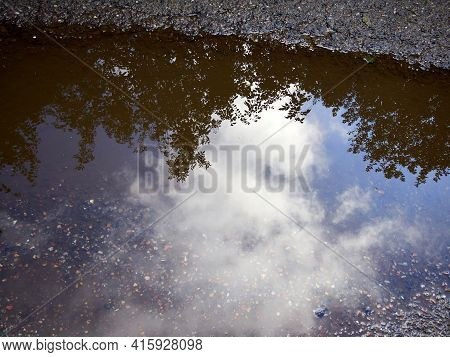 Bushes And Clouds Reflected In A Puddle In The Street With Clear Spcae For Graphics And Text