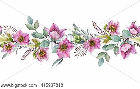 Hellebore Flower Seamless Border. Spring Pink Flowers In The Full Bloom With Eucalyptus Leaves Seaml