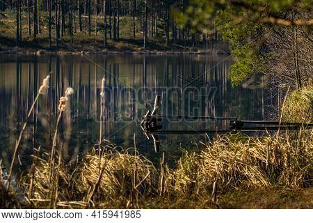 A Beautiful Reflections Of A Spring Trees On The Forest Lake Water Surface. Spring Scenery Of Woodla