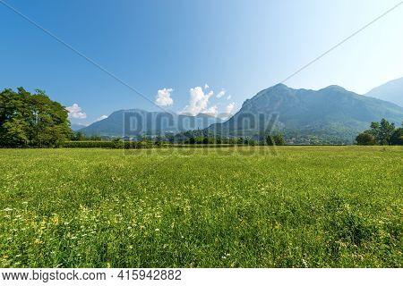 Valsugana Or Val Sugana. Summer Landscape Of Sugana Valley With Green Meadows And Mountains. Borgo V