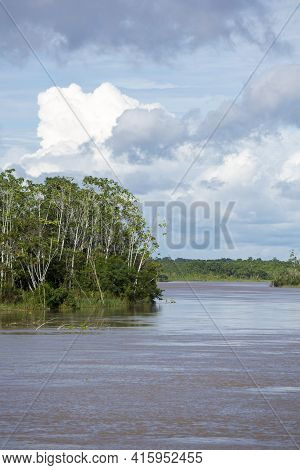 Cruising On The River The Amazon, In The Rain Forest, Brazil