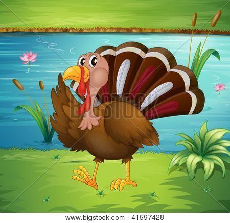 Illustration of a turkey walking near the river
