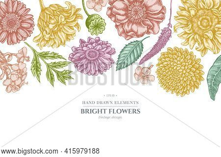 Floral Design With Pastel Poppy Flower, Gerbera, Sunflower, Milkweed, Dahlia, Veronica Stock Illustr