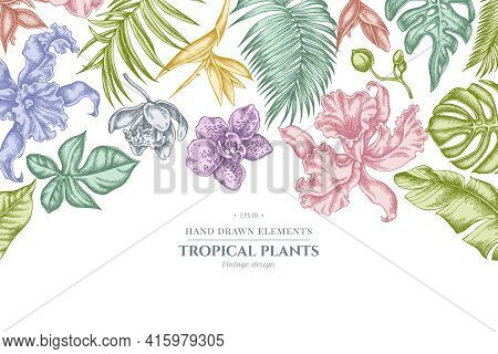 Floral Design With Pastel Monstera, Banana Palm Leaves, Strelitzia, Heliconia, Tropical Palm Leaves,
