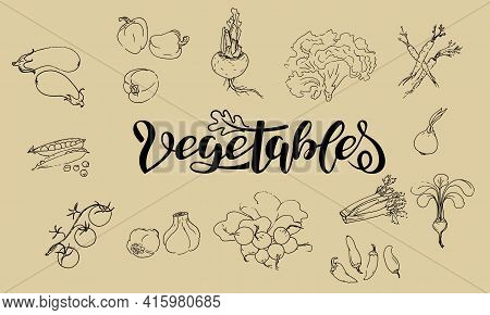 Set Of Vector Illustrations Of Vegetables In Sketch Style. Pepper, Onion, Garlic, Green Peas, Celery