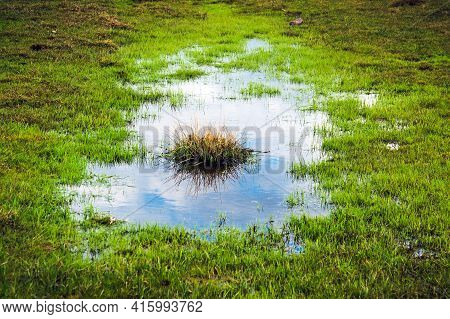 Puddle In A Meadow After A Rain Storm With A Reflection Of The Sky And An Island Of Grass In The Mid