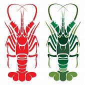 Vector image of an lobster on white background poster