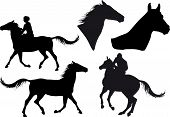 five silhouettes of horses horse heads and riders poster