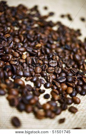 Brew Ready Coffee Beans