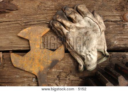 Glove_35825