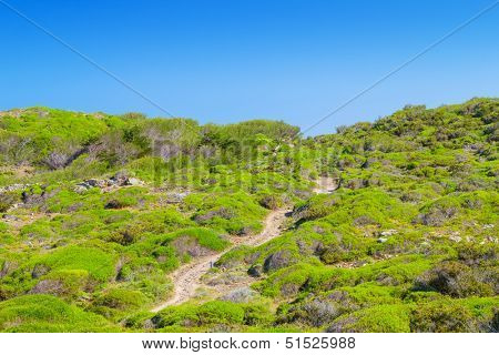 Cami de Cavalls walking path going through green hills of Menorca island, Spain. It encircles the whole island and extends for 186 km or 116 miles.