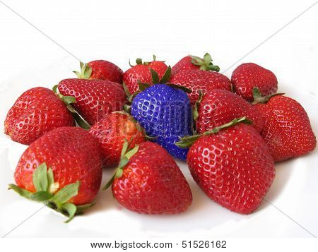 Red strawberries with a blue one. Difference and unique concept
