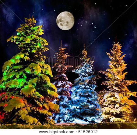 Christmas Firtree