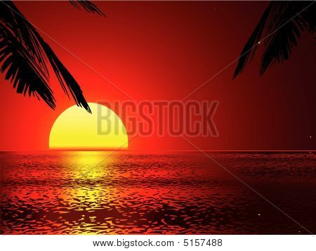 Vector Sunset With Removeable Palms (vector)