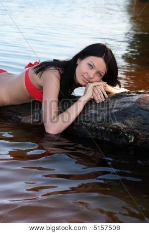 A Brunette On The Log