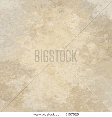 Muted Natural Abstract