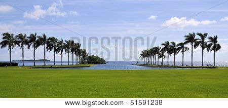 The Lawn and the Sea
