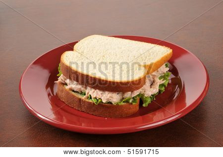 Tuna Sandwich On A Red Plate