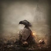 Crow sitting on a gravestone in the the field poster