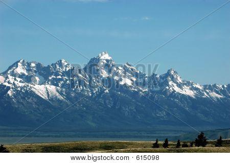 Grand Teton Vista