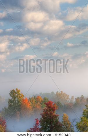 Autumn, Kalamazoo River Valley