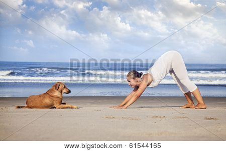 Yoga With Dog In India