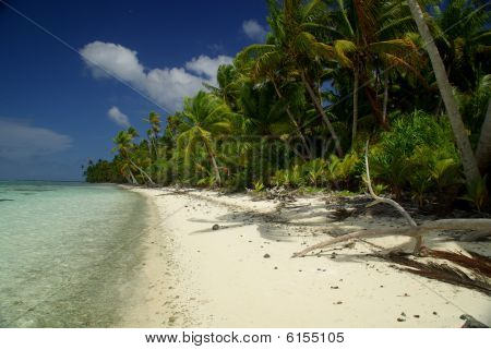 White sand beach in Polynesia