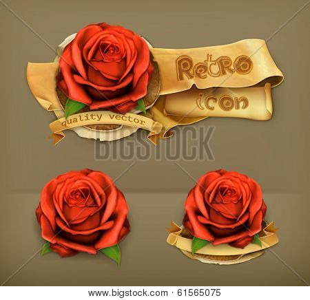 Red rose, retro vector icon
