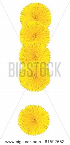 Exclamation Sing Made From Dandelion Flower