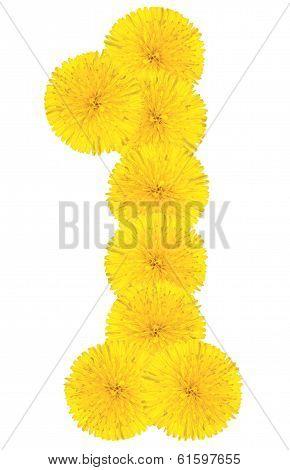 Number 1 Made From Dandelion Flower