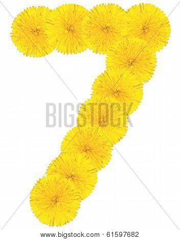 Number 7 Made From Dandelion Flower