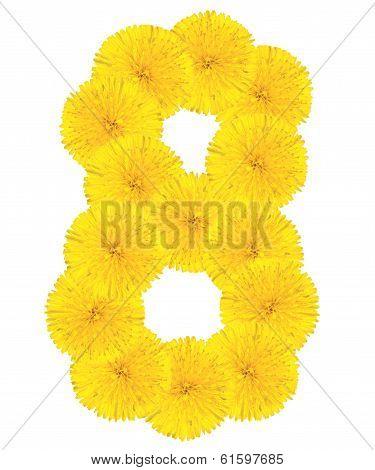 Number 8 Made From Dandelion Flower