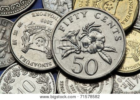 Coins of Singapore. Golden trumpet (Allamanda cathartica) depicted in Singapore fifty cents coin.