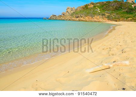 White Driftwood In Rena Bianca Beach