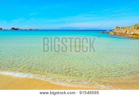 Golden Shore In Rena Bianca