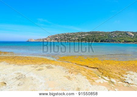 Yellow Rocks In Capo Testa