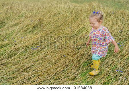 Two years old preschooler girl walking on annual plants field covering