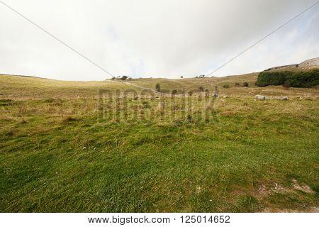 Open landscape