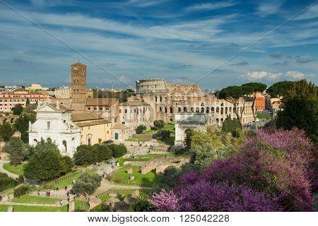 View of the Forum Romanum towards the coliseum Rome Italy