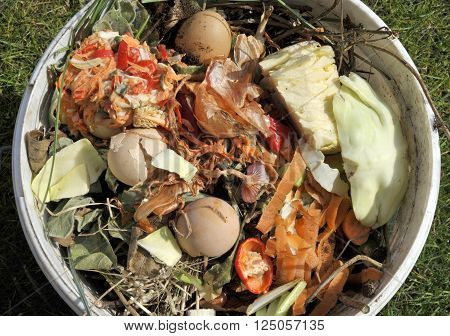 Kitchen food and vegetable waste collected in a reused container for recycling via a home composter or wormery. ** Note: Soft Focus at 100%, best at smaller sizes