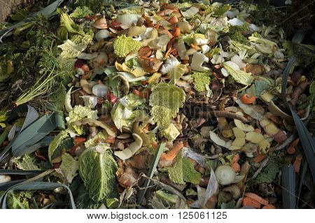 Garden compost heap with kitchen food waste vegetables fruit peel and green refuse.